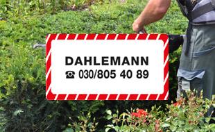 Bild zu Dahlemann Dieter in Berlin