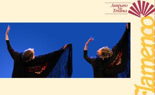 Flamencostudio Amparo de Triana