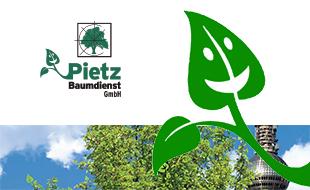 Logo von Pietz Baumdienst GmbH