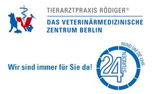 Logo von Rödiger