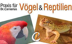 Carnarius, Mandy, Dr. - Praxis für Vögel & Reptilien