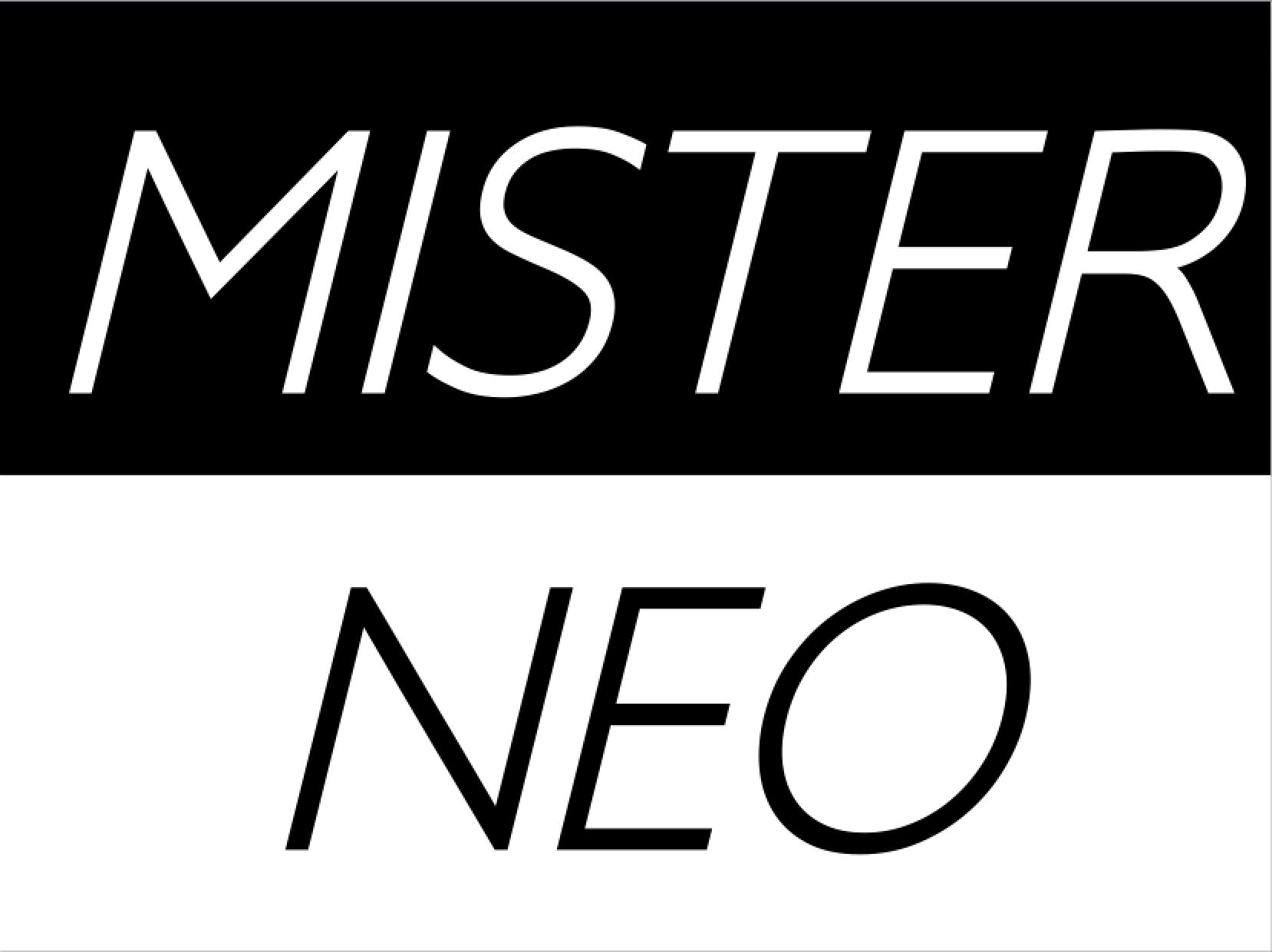 Junggesellenabschied Berlin mit Mister Neo
