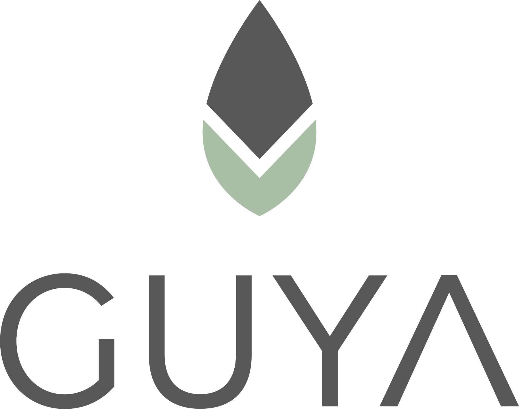 GUYA Guayusa - DrinkGUYA