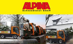 Logo von Alpina Schneedienst GmbH